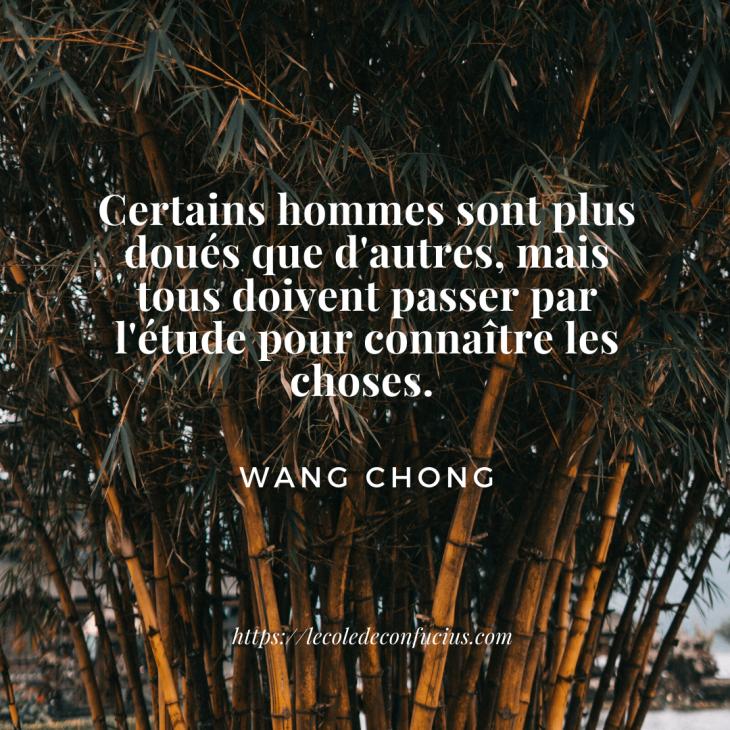 Wang chong(1)